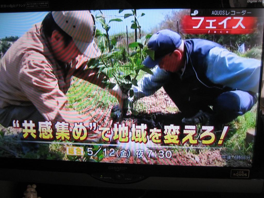 f:id:tobishima-life:20170429170453j:plain