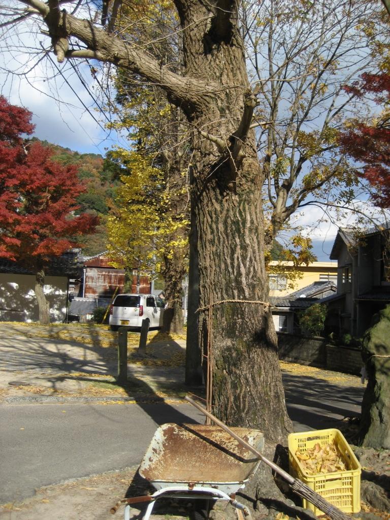 f:id:tobishima-life:20171206133833j:plain