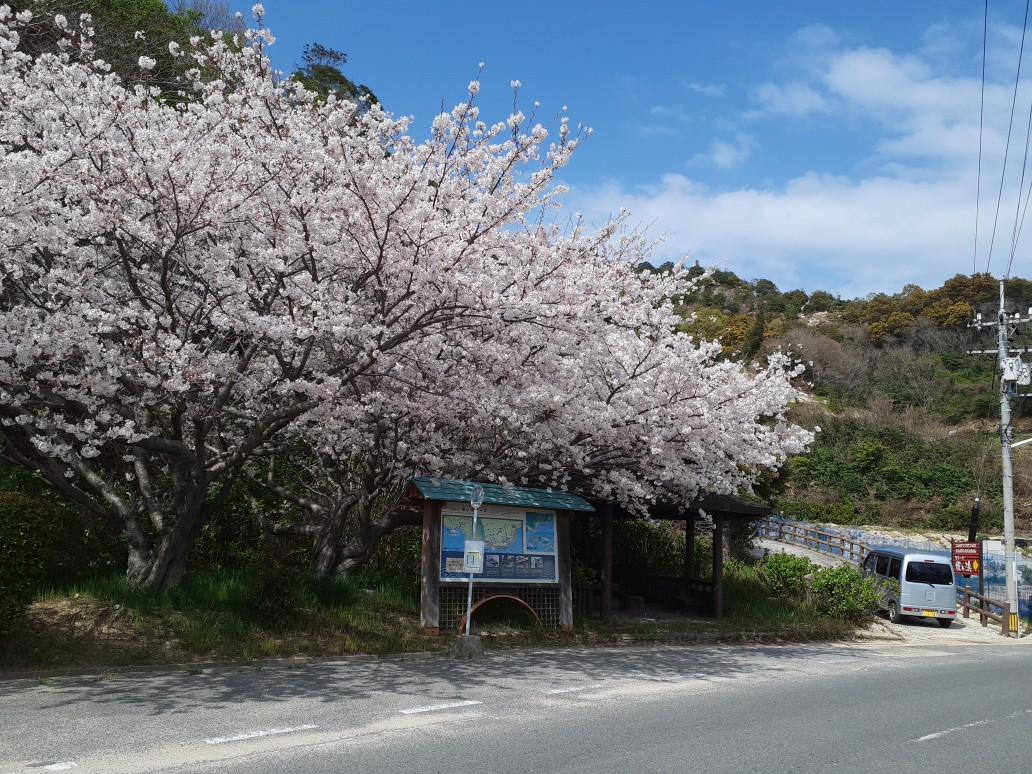 f:id:tobishima-life:20210403123701j:plain