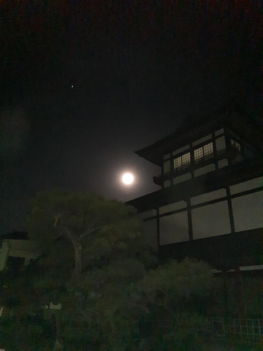 f:id:tobishima-life:20210725141036j:plain