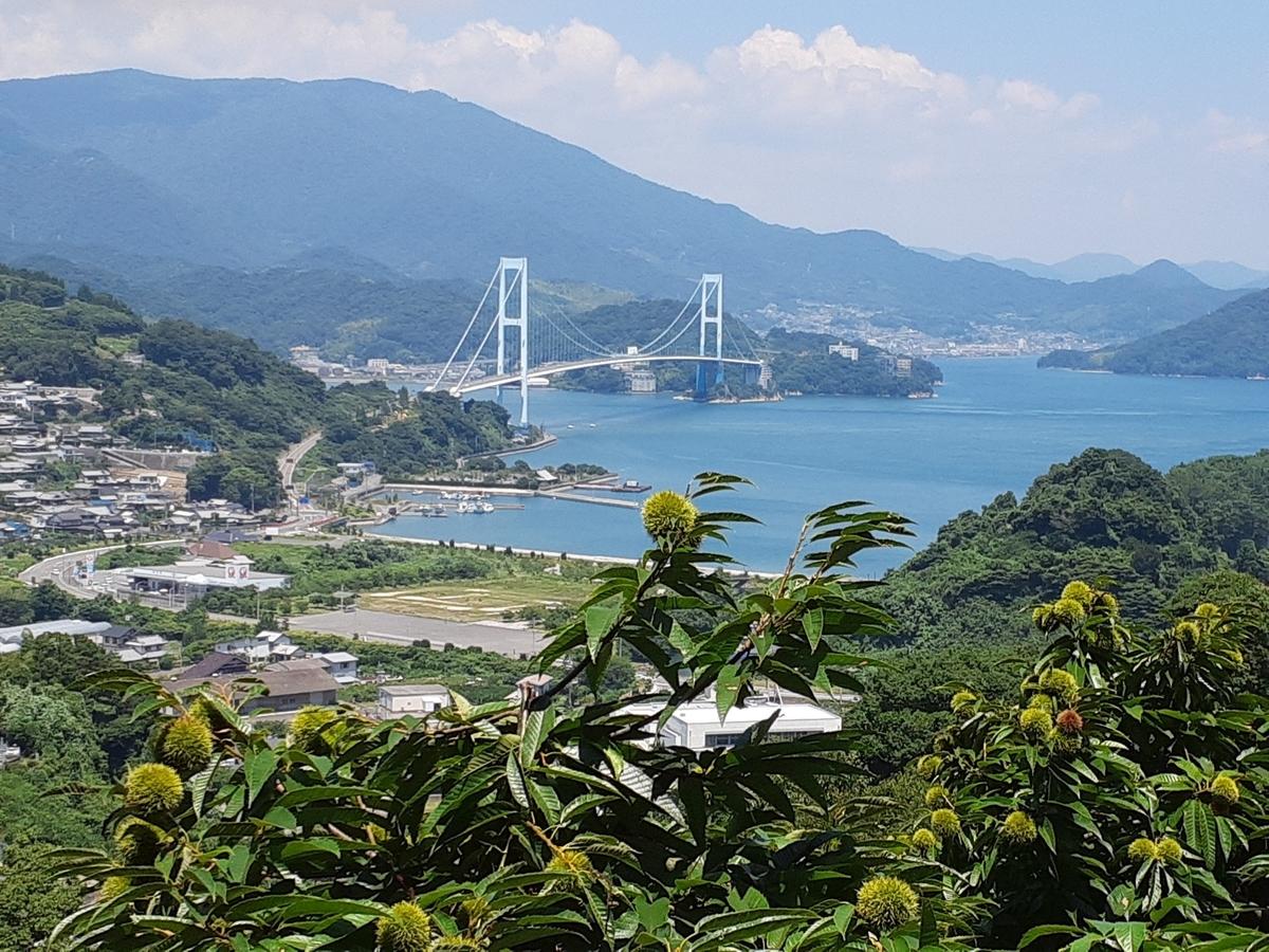 f:id:tobishima-life:20210728133453j:plain