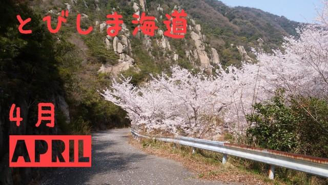 f:id:tobishimakaido:20190307214831j:image