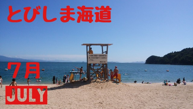 f:id:tobishimakaido:20190412002541j:image