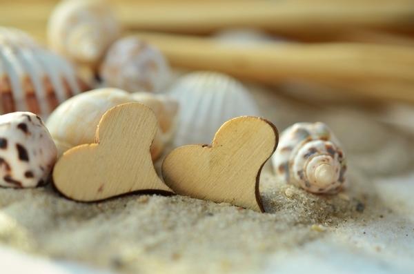 ハート型の貝殻