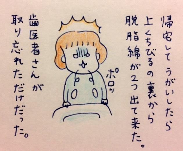 f:id:tocotocokumachan:20170703205049j:plain