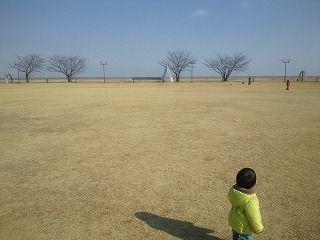 f:id:tocotocokuwana:20170120231343j:plain