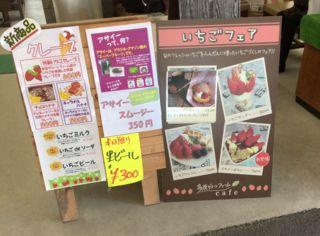 f:id:tocotocokuwana:20170425012351j:plain