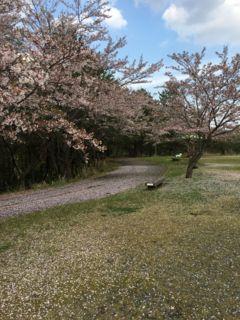 f:id:tocotocokuwana:20170429173936j:plain