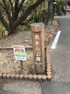 f:id:tocotocokuwana:20171105124733j:plain
