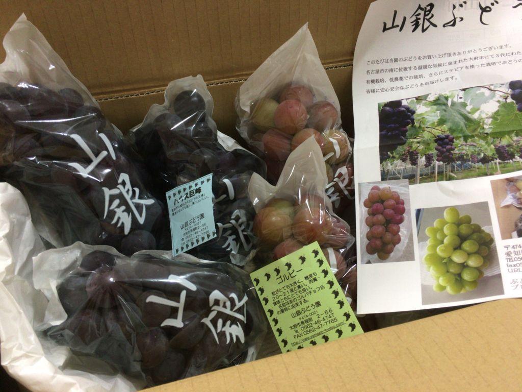 f:id:tocotocokuwana:20180808233931j:plain