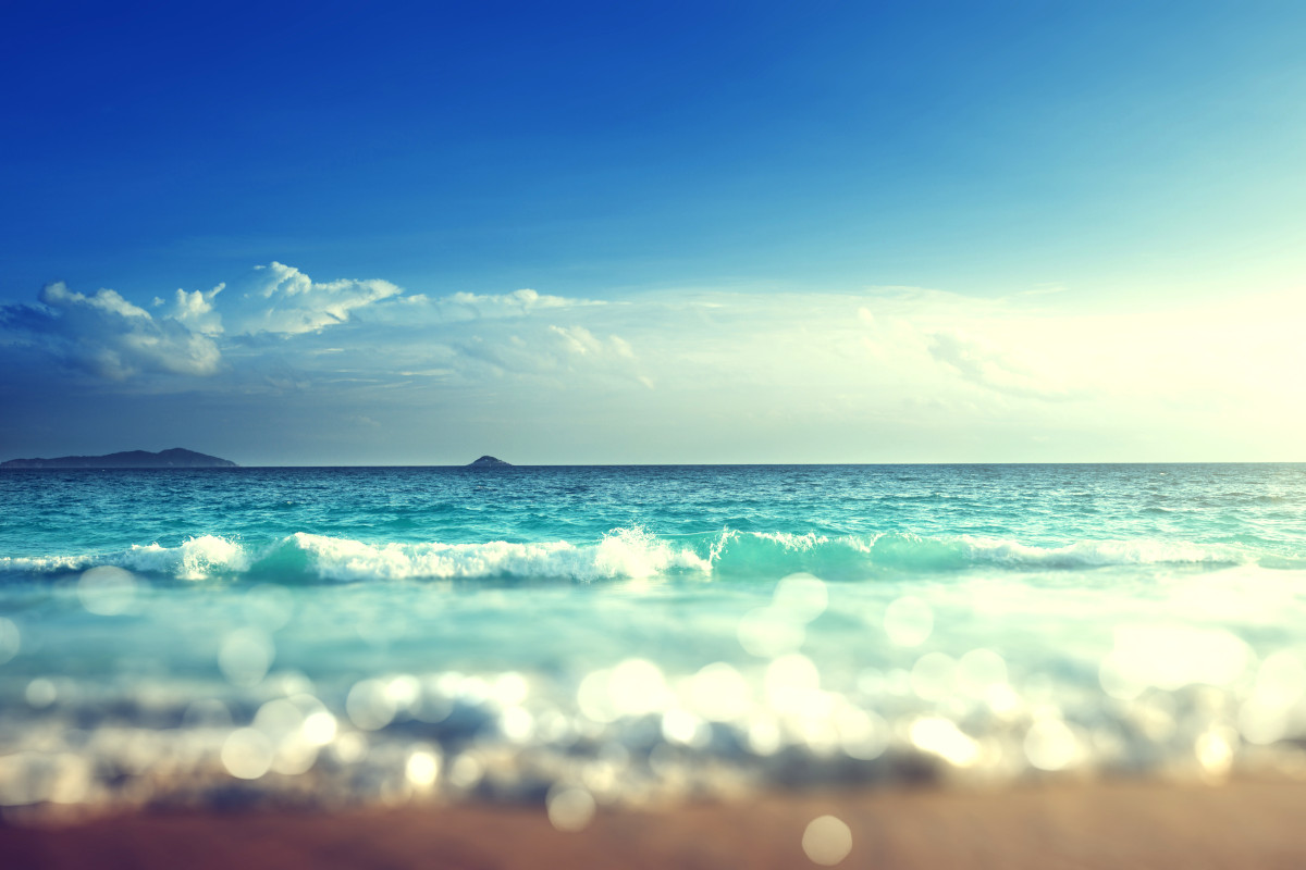 「海はどうしてできたのか」を読み、海に関する質問にサラリと答える
