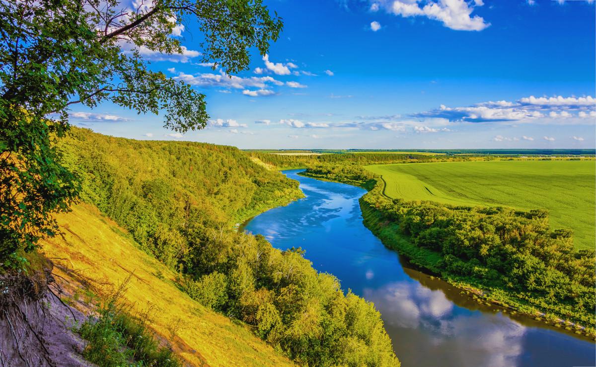 「川はどうしてできるのか」を読み、川を学び、川への愛を深める