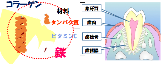 f:id:tofukai:20180514201147p:plain