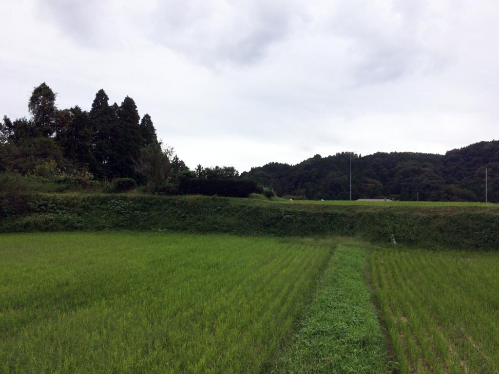 f:id:toguo:20161217172209j:plain