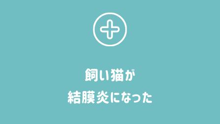 f:id:tohan_hiyoko:20200828205351p:plain