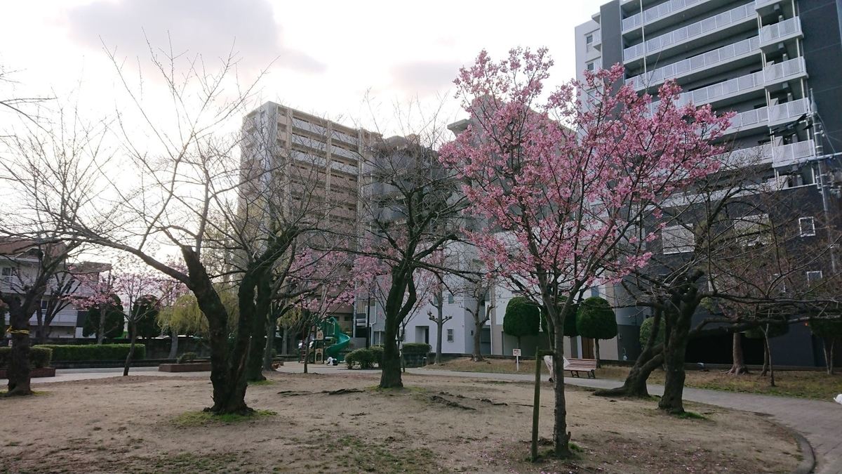 f:id:tohka-dayori:20210314083221j:plain