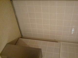 f:id:toilet1010:20090516013001j:image