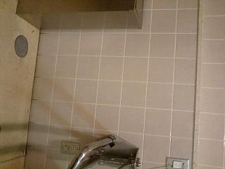 f:id:toilet1010:20090516013002j:image