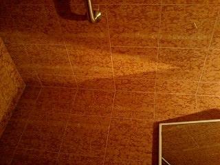 f:id:toilet1010:20090718040901j:image