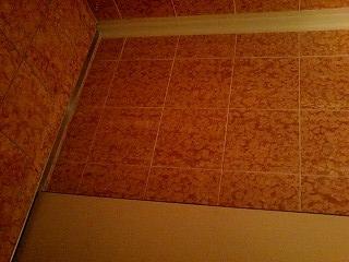 f:id:toilet1010:20090718040906j:image