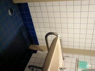 f:id:toilet1010:20090718042357j:image