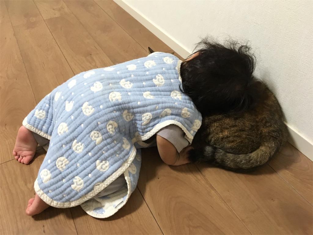 f:id:tojikoji:20170930203141j:image