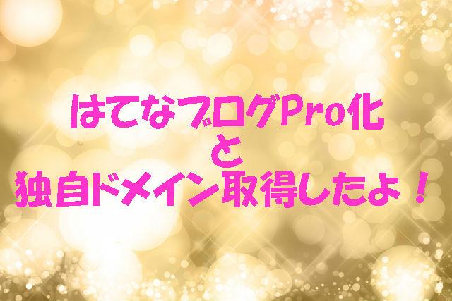 f:id:toka-ina:20160801234942j:plain