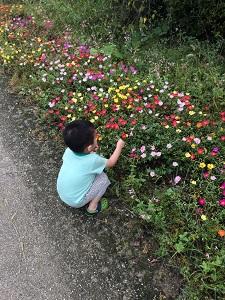 f:id:toka-ina:20160918130003j:plain