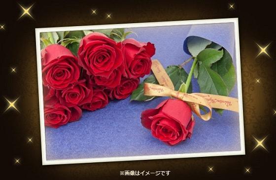 f:id:toka-ina:20161207175002j:plain