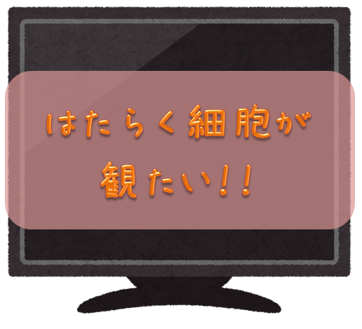 f:id:tokaman0105:20180925040419p:plain