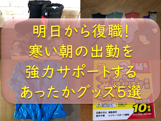 f:id:tokaman0105:20190130145822p:plain