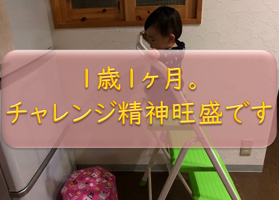 f:id:tokaman0105:20190211160036p:plain