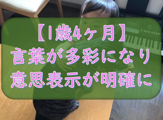 f:id:tokaman0105:20190521060745p:plain