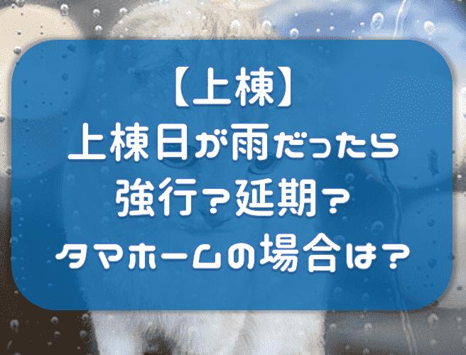 f:id:tokaman0105:20190918061642p:plain