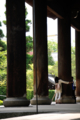 京都新聞写真コンテスト 国宝をうらやむ