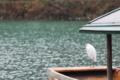 京都新聞写真コンテスト 止まり舟