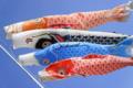 鯉川シーサイドパークの鯉のぼりは
