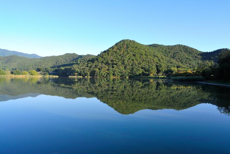 京都新聞写真コンテスト 空木