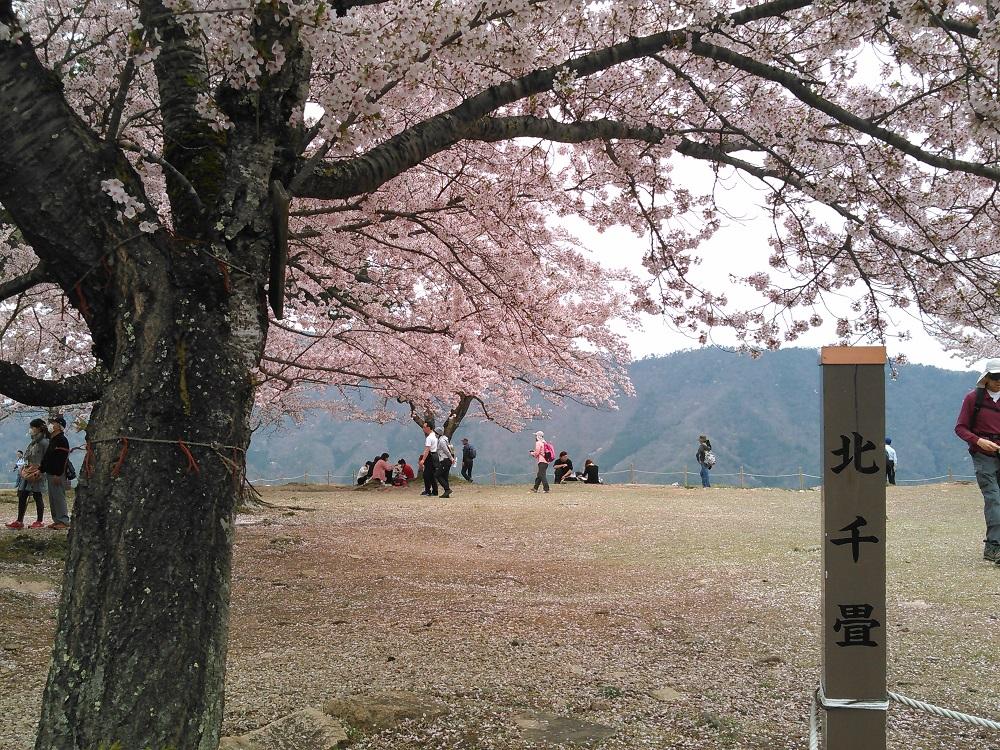 f:id:tokidokiyamanobori:20160501092411j:plain
