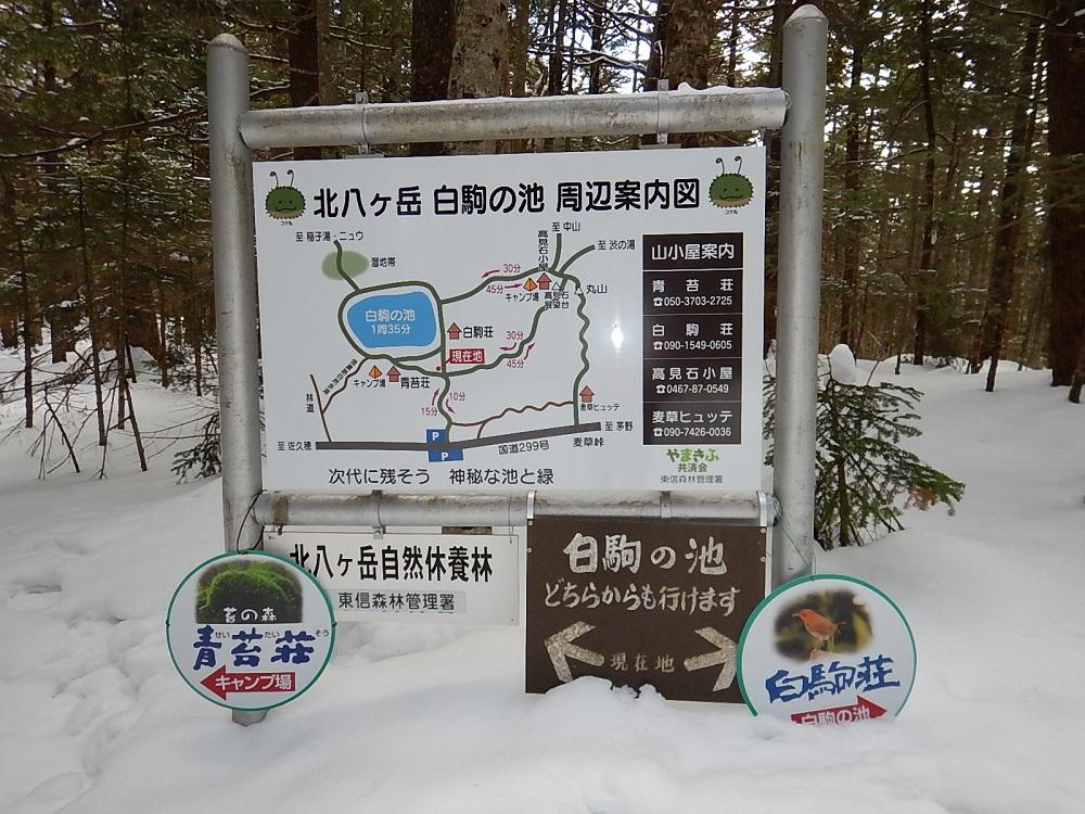 f:id:tokidokiyamanobori:20170320074343j:plain