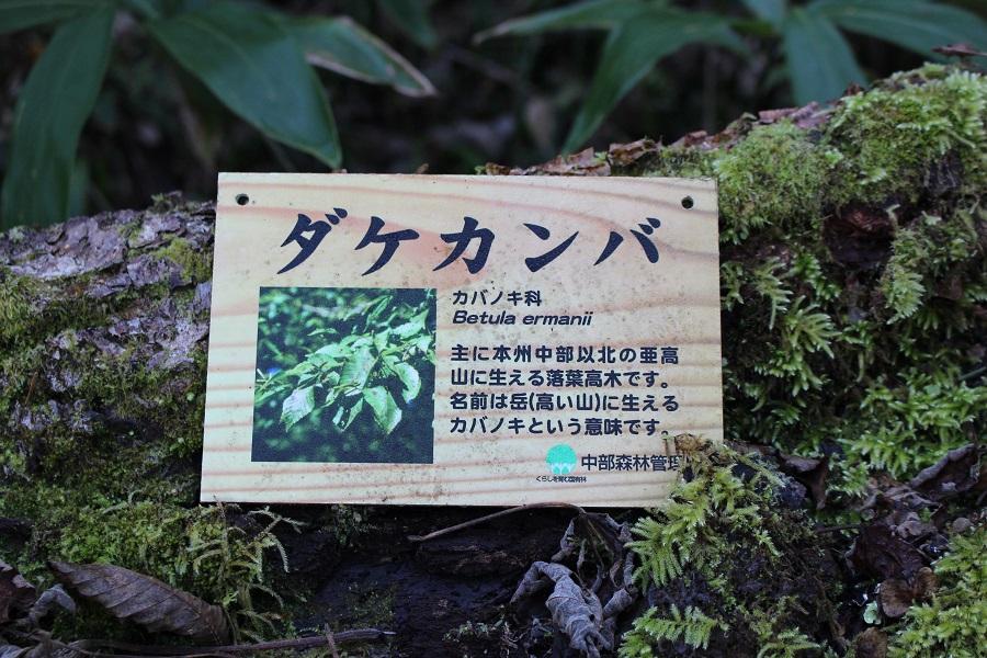f:id:tokidokiyamanobori:20170326111842j:plain