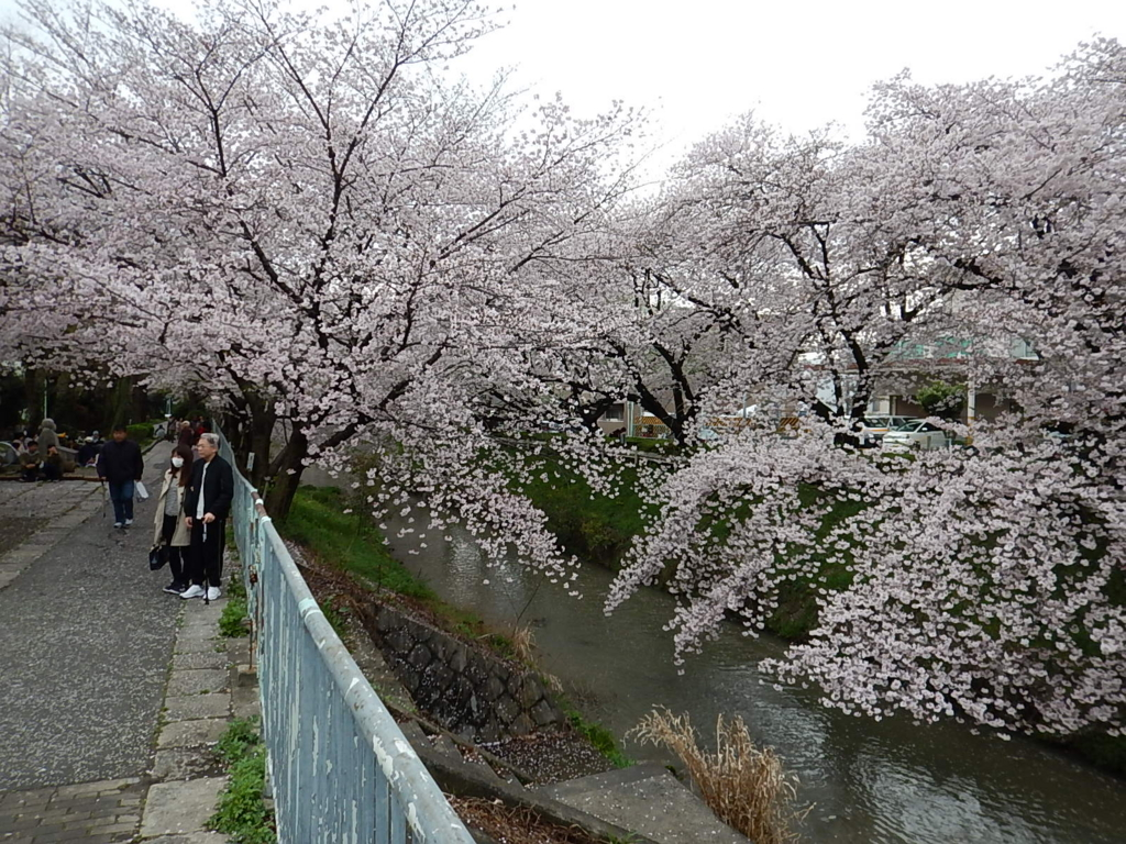f:id:tokidokiyamanobori:20170412210909j:plain