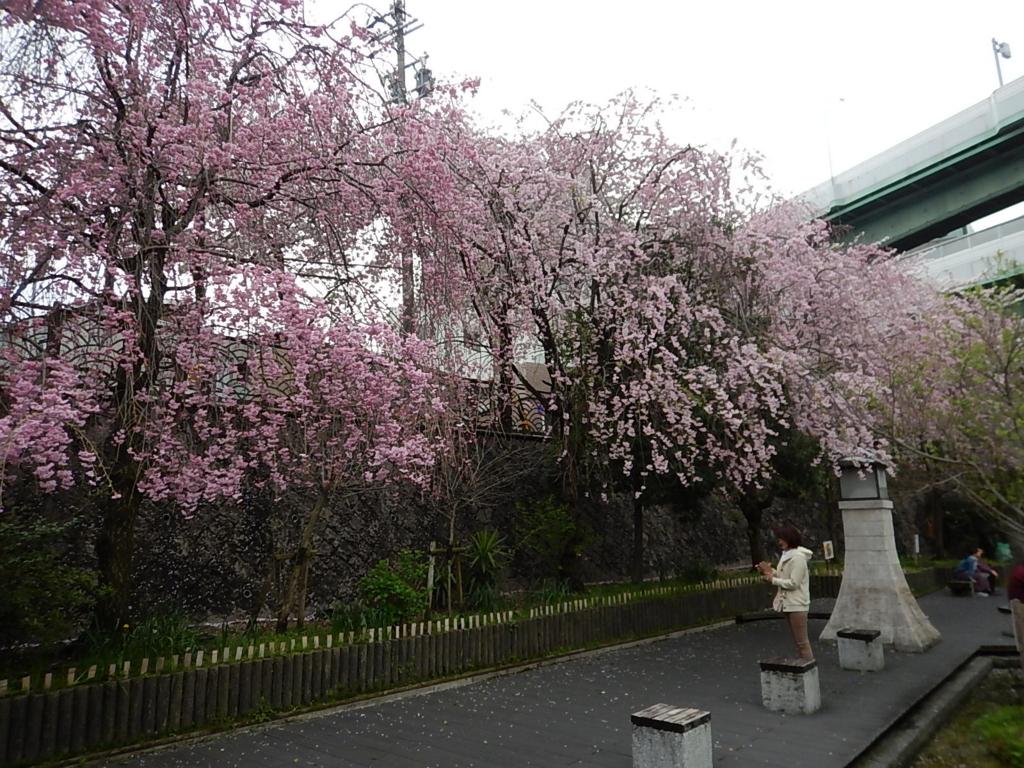 f:id:tokidokiyamanobori:20170412211025j:plain