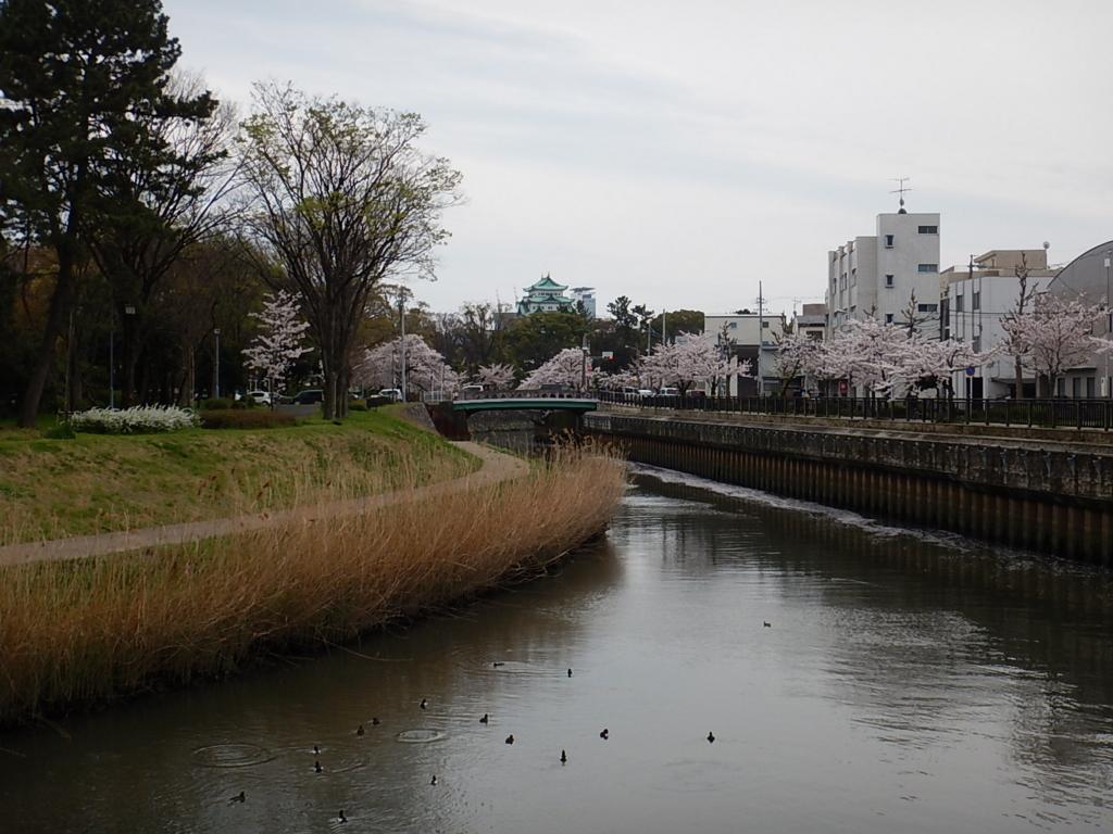 f:id:tokidokiyamanobori:20170412211128j:plain