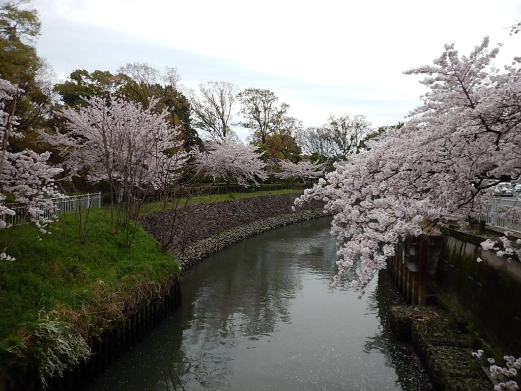 f:id:tokidokiyamanobori:20170412211154j:plain