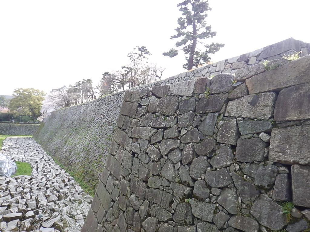 f:id:tokidokiyamanobori:20170412211843j:plain