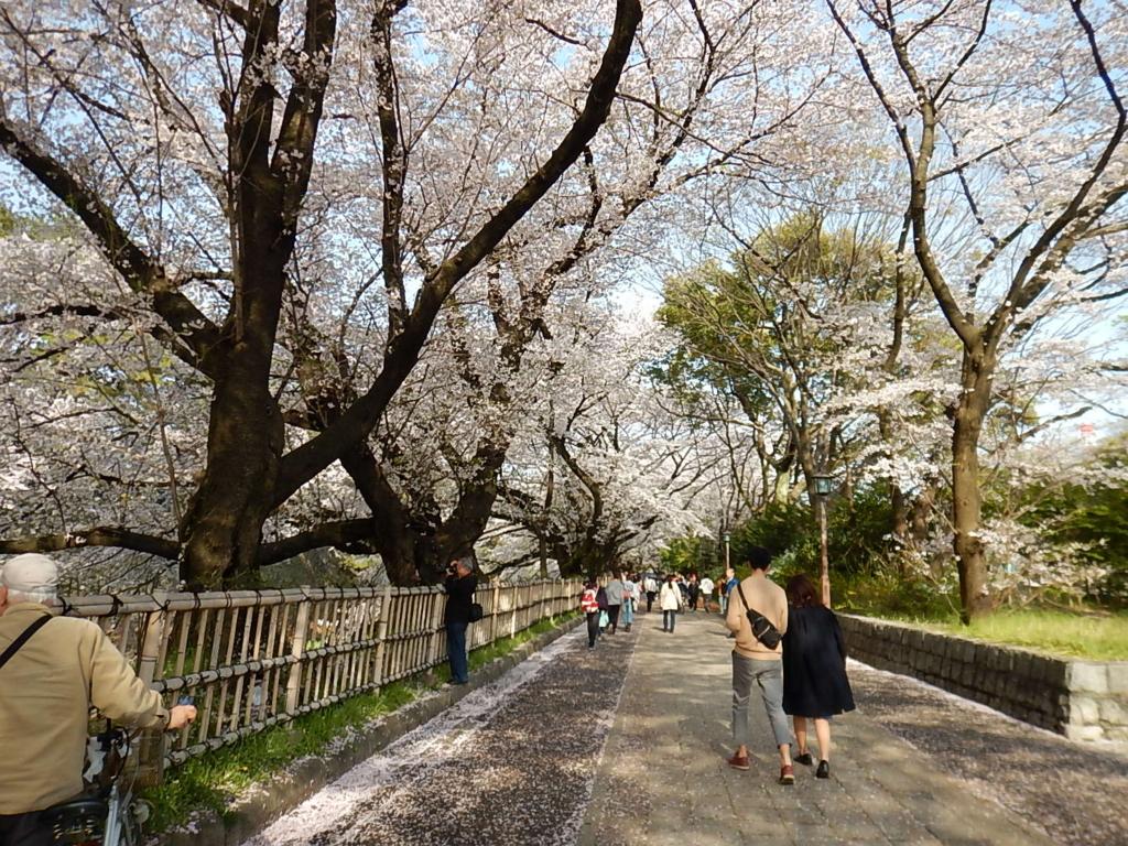 f:id:tokidokiyamanobori:20170412212408j:plain