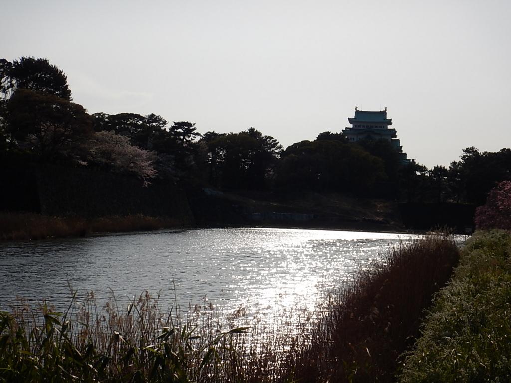 f:id:tokidokiyamanobori:20170412212531j:plain