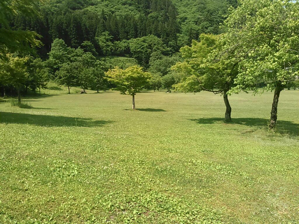 f:id:tokidokiyamanobori:20170612221242j:plain