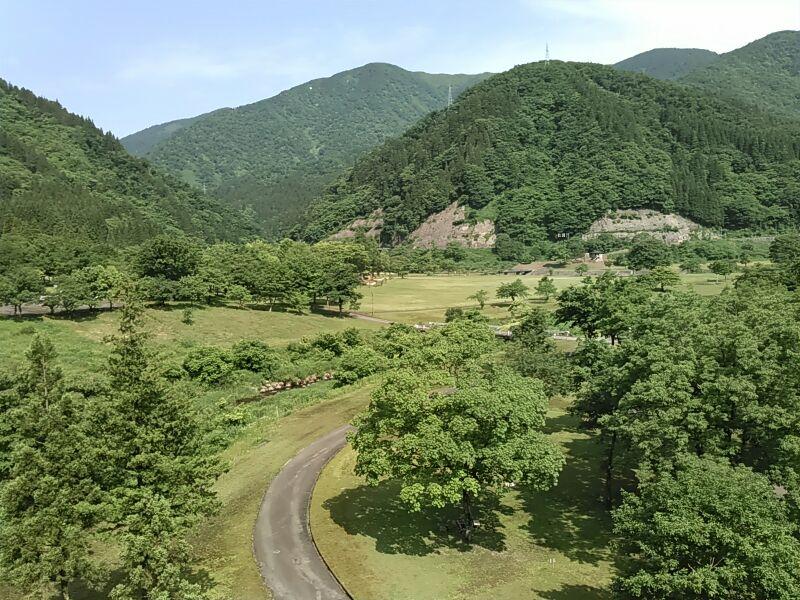 f:id:tokidokiyamanobori:20170612221646j:plain